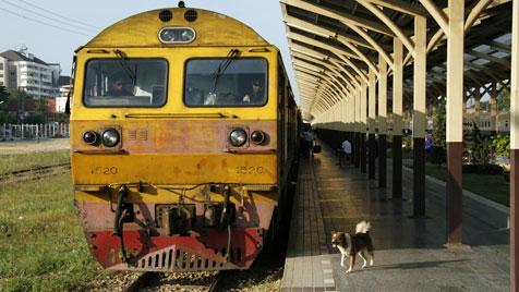 Zug fahren mit Hund - Mit Bello auf großer Fahrt (Bild: thinkstockphotos.de)