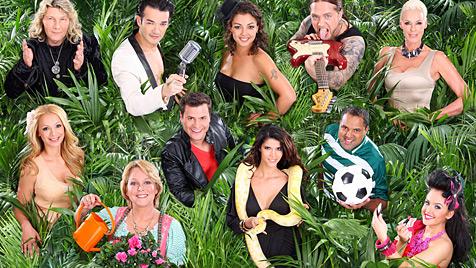 Diese elf Promis ziehen ins RTL-Dschungelcamp (Bild: RTL/Stefan Gregorowius)