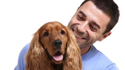 Studie zeigt: Hunde erkennen, dass sie gemeint sind (Bild: Photos.com/Getty Images)