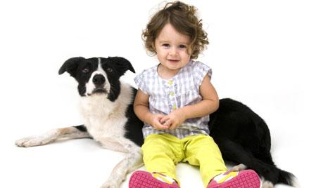 USA: Vermisstes Mädchen dank Hund wieder daheim (Bild: thinkstockphotos.de)