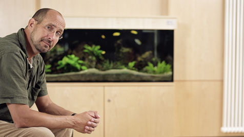 Neues Jahr, neues Hobby: Faszination Aquarium (Bild: thinkstockphotos.de)