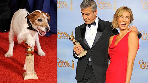 """Filmhund """"Uggie"""" stiehlt Superstar Clooney die Show (Bild: AP)"""