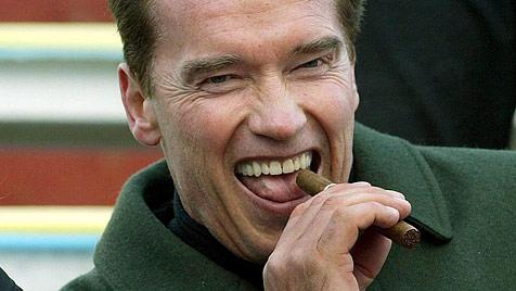 Gerüchte um Besuch von Arnold Schwarzenegger (Bild: APA)