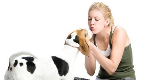Hunde nutzen laut Studie Menschen als Werkzeug (Bild: Photos.com/Getty Images)