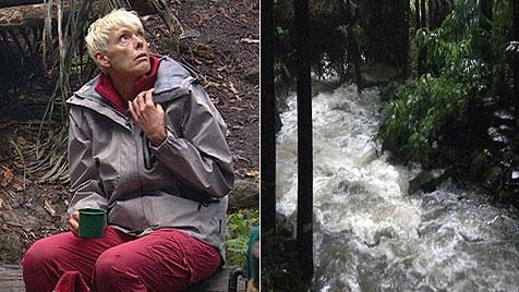 Dschungelshow geht weiter ++ Ailton abgewählt (Bild: RTL)