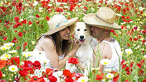 Was Partnerbörsen für Hundebesitzer wirklich taugen (Bild: thinkstockphotos.de)