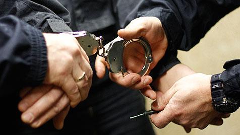 Wachsame Polizisten erwischen Diebe bei der Flucht (Bild: APA/GEORG HOCHMUTH)