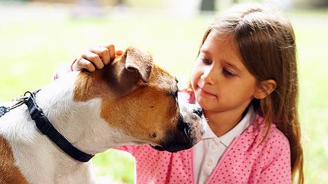 Neuer Verein hilft bei Finanzierung von Tiertherapie (Bild: JupiterImages Corporation)