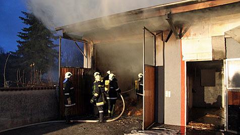 Brand in Reitstall im Weinviertel - Pferd verendet im Feuer (Bild: FF Hollabrunn)