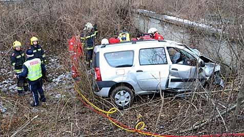 Pkw-Lenker stirbt bei Unfall auf A2 nahe Wr. Neustadt (Bild: Einsatzdoku.at)