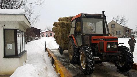 Die Hilfsaktion für das bosnische Gestüt Vucijak (Bild: Max Dobretsberger)