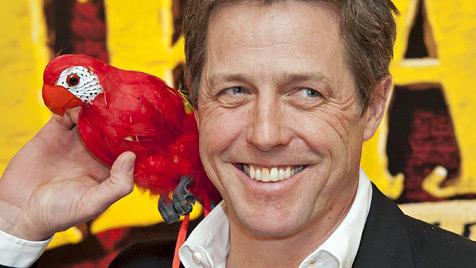 Feschak Hugh Grant knutscht ab jetzt lieber Papageien (Bild: AP)
