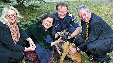 Polizeihund bekam Mikl-Leitner als prominente Patin (Bild: APA/LAND OBERÖSTERREICH)