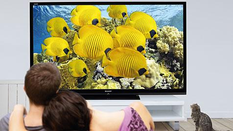 80 Zoll großer LCD von Sharp ab Ende März im Handel (Bild: Sharp)