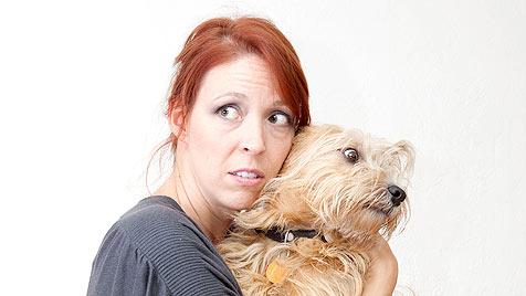 Pilotprojekt in den USA: Tiere dürfen mit ins Frauenhaus (Bild: thinkstockphotos.de)