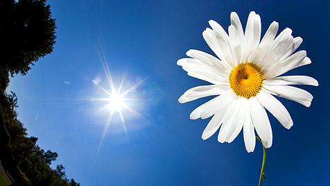 http://imgl.krone.at/Bilder/2012/04/27/Der_Start_in_die_Woche_wird_sonnig_und_warm-Bis_zu_28_Grad-Story-332934_476x268px_1_iUJ2ZgU_XQM1U.jpg