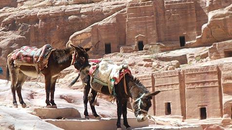 Jordanien: Petra und der listige Scheich Ibrahim (Bild: Michaela Reichart)