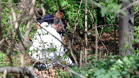 Nach Leichenfund im Wienerwald: Opfer identifiziert (Bild: APA/HELMUT FOHRINGER)