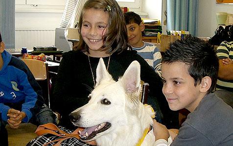 In Österreich kommen Schulen jetzt auf den Hund (Bild: Verein Rund um den Hund)