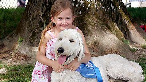 Hund erschnüffelt Nellys schlechte Zuckerwerte (Bild: APA/Verein Partner-Hunde Österreich)