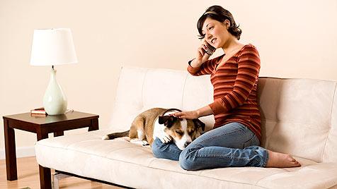 Die Qual der Wahl des richtigen Hundesitters (Bild: thinkstockphotos.de)