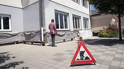Aufregung um getötete Küken in Kärntner Schule (Bild: Uta Rojsek-Wiedergut)
