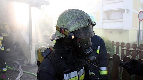Heikler Einsatz nebst 30 Schlangen bei Brand in NÖ (Bild: Freiwillige Feuerwehr Tulln-Stadt)