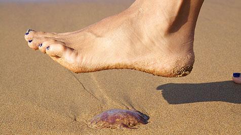 Urlauber, Achtung: Diese Gefahren lauern am Strand (Bild: thinkstockphotos.de)