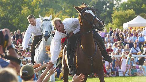 """Familienspaß beim """"Festival der Tiere"""" auf Schloss Hof (Bild: Aleksandra Pawloff)"""