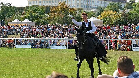 "Familienspaß beim ""Festival der Tiere"" auf Schloss Hof (Bild: Schloss Hof)"