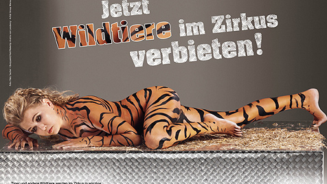 Nackt und bemalt: Nova Meierhenrich als sexy Tigerin (Bild: PeTA)
