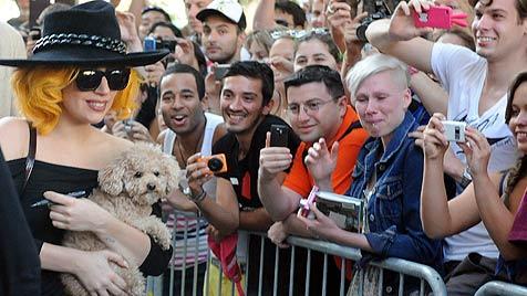 """Pop-Lady Gaga mit Hündchen """"Fozzi"""" gelandet (Bild: APA/HERBERT PFARRHOFER)"""