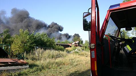 Großeinsatz der Feuerwehren bei Flurbrand in NÖ (Bild: Feuerwehr Gänserndorf)