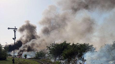 Großeinsatz der Feuerwehren bei Flurbrand in NÖ (Bild: APA/FF STRASSHOF)