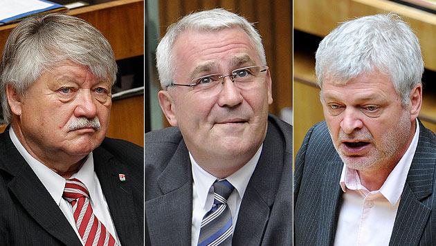ÖVP und Grüne geben Martin Graf Schützenhilfe (Bild: APA/ROBERT JAEGER/GEORG HOCHMUTH/ROLAND SCHLAGER)