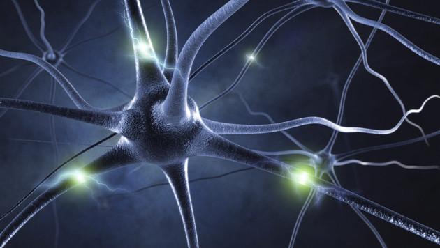 Hormone st�ren in Wechseljahren Gehirnleistung (Bild: thinkstockphotos.de)