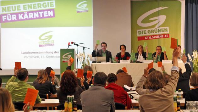 Holub offiziell Spitzenkandidat der Kärntner Grünen (Bild: APA/GERT EGGENBERGER)