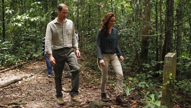 Trotz Skandalfotos: William und Kate auf Regenwald-Tour (Bild: EPA)