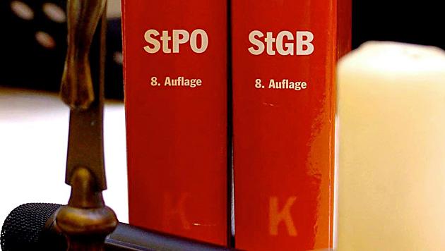 Wien: Opfer erkennt Sex-Täter bei Prozess wieder (Bild: APA/BARBARA GINDL)