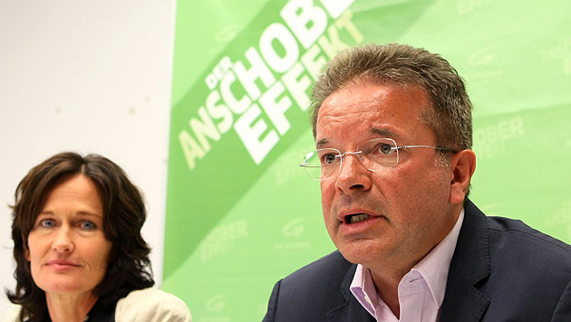Grünen-Landesrat Anschober geht drei Monate in Therapie (Bild: APA/RUBRA)