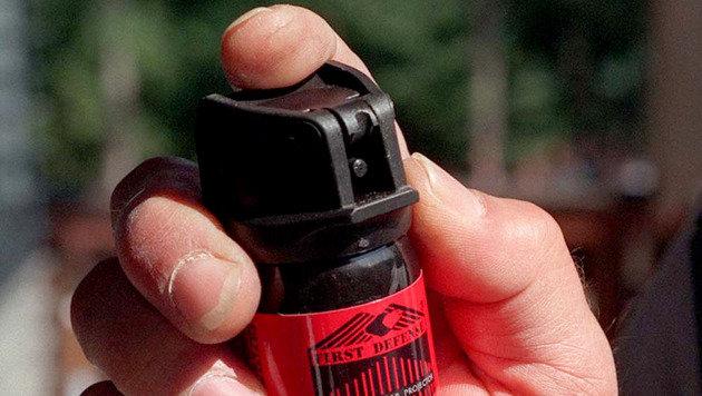 Schwarzfahrer verletzt Zugbegleiter mit Reizgas (Bild: APA/FRITZ PRESS (Symbolbild))