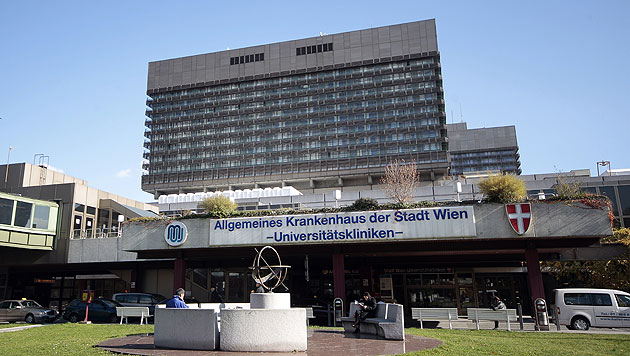 Ärzte einigen sich mit Wiener AKH - kein Streik (Bild: APA/GEORG HOCHMUTH)