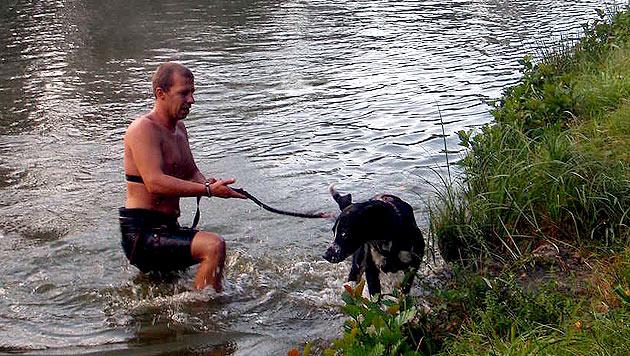 """Der """"Irondog""""-Triathlon für Hund und Herrl (Bild: Daniel Vajk)"""