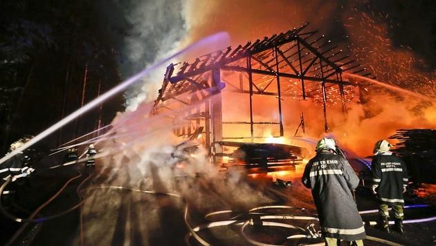 Sägewerk in Hof bei Salzburg ging in Flammen auf (Bild: MARKUS TSCHEPP)