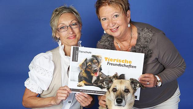 Wichtige Themen zum Welttierschutztag (Bild: Martin A. Jöchl)