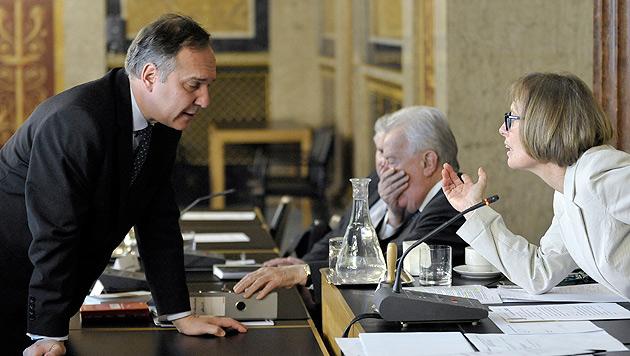 """U-Ausschuss live: """"Bürger brauchen keinen Filter"""" (Bild: APA/HERBERT NEUBAUER)"""