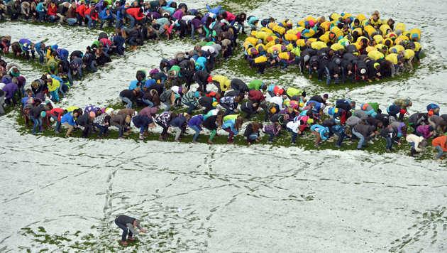 """Salzburger Schüler schaffen Weltrekord im """"Herminating"""" (Bild: APA/Barbara Gindl)"""