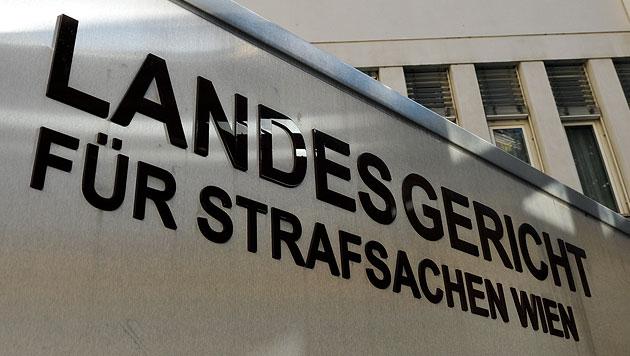 """Sieben Jahre Haft für """"Pink Panther""""-Räuber (Bild: APA/HERBERT NEUBAUER (Symbolbild))"""