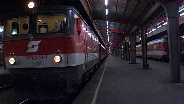ÖBB-Züge in Wien und NÖ standen still (Bild: ANDI SCHIEL)