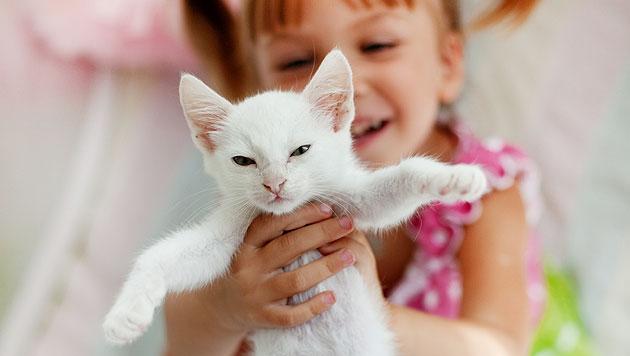 Haustiere für Kinder: Erlauben oder nicht? (Bild: thinkstockphotos.de (Symbolbild))